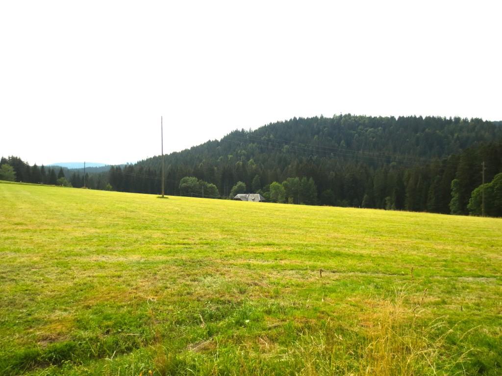 Mathislehof Schwarzwald Hinterzarten