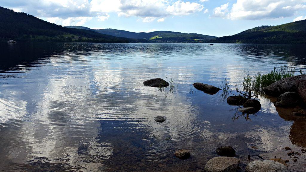 Schlusee Ufer