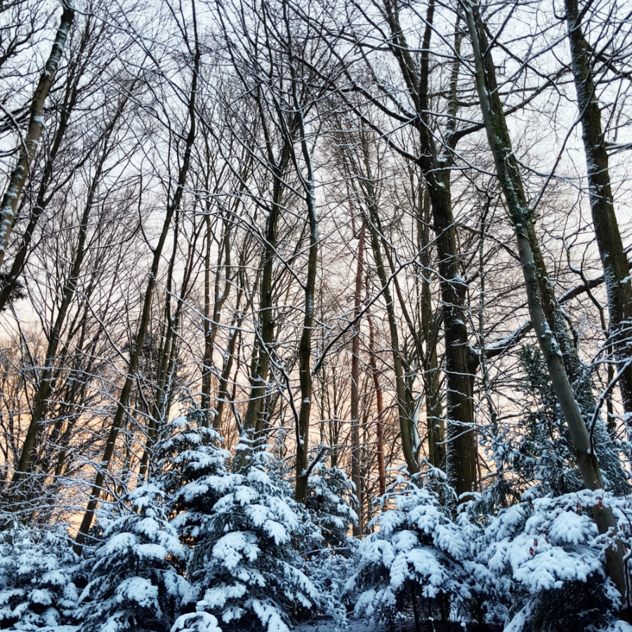 Hygge Schneelandschaft